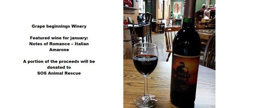 Grape Beginnings Winery